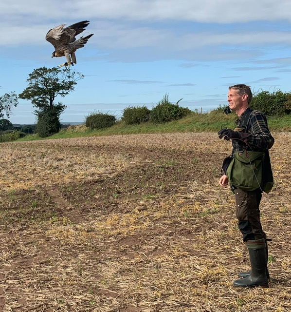 Falconry Vet Richard Jones shares his history with Ladies In The Field in his guest blog